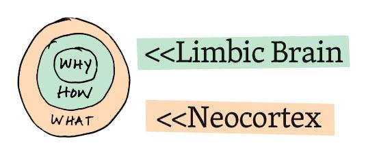 Limbic-Brain-Simon-Sinek