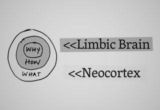 Limbic-Brain-Simon-SinekM