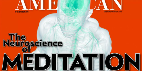 scientific-american-november